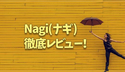 本当にナプキンがいらない?Nagi(ナギ)を3ヶ月使いこんだ私が徹底レビュー【辛口評価】